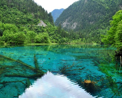 7 Days Chengdu, Jiuzhaigou & Mt. Emei Tour